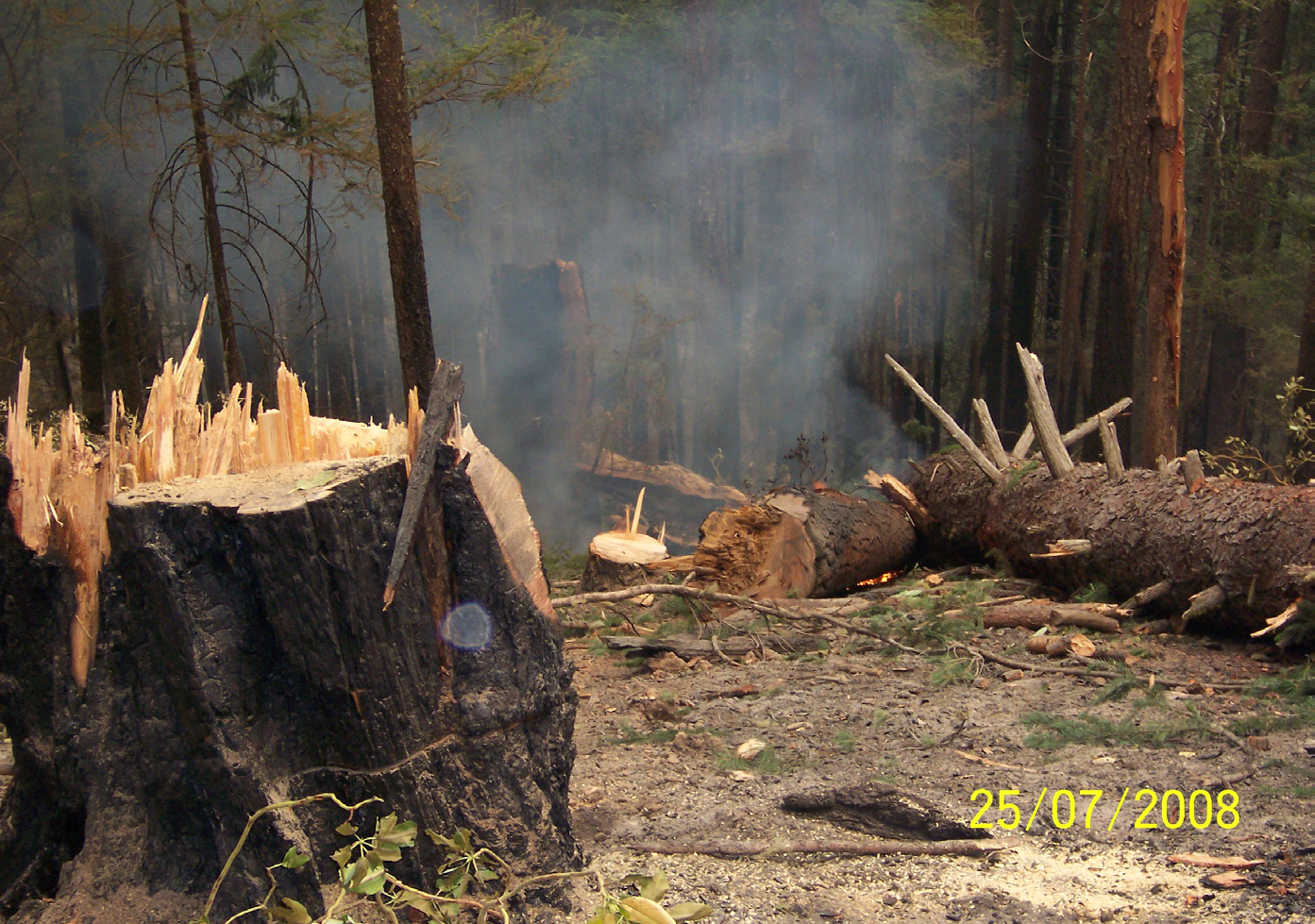 Colorado Firecamp, Dutch Creek Incident Investigation Report