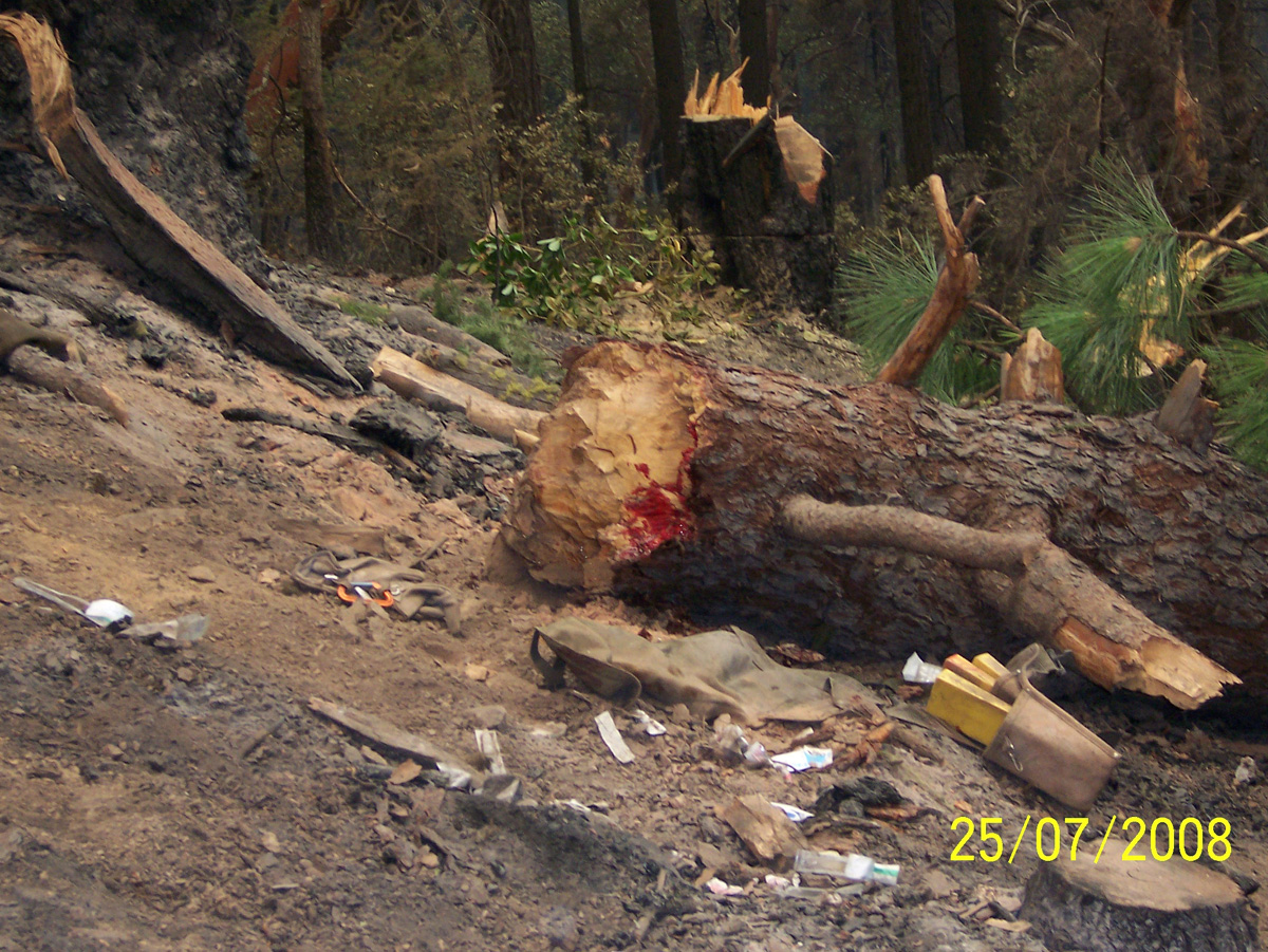 Colorado Firecamp, Dutch Creek Incident Investigation Report